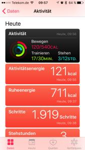 Screenshot Aktivitäten, Foto HoSi